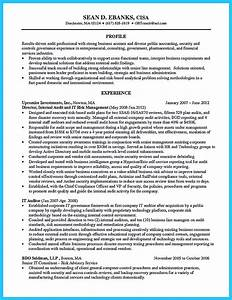 References Examples For Resumes Making A Concise Credential Audit Resume