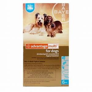 Flea And Tick Product Comparison Chart Advantage Multi Dog Heartworm Flea Worms Lambert Vet