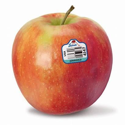 Jonagold Apples Apple Stemilt Varieties Lady Delicious