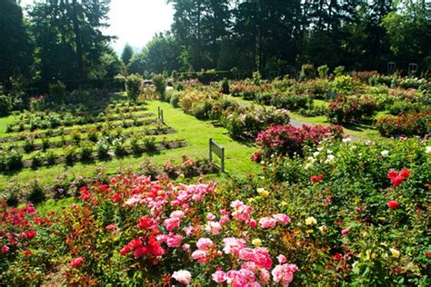 portland international test garden how to travel to oregon in style