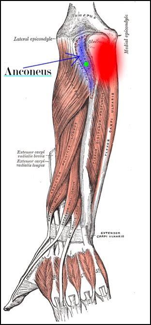 treat tennis elbow part