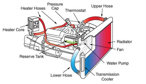 Diagram System Vehicle Cooling by Checking Your Ac And Coolant Systems Your Parts