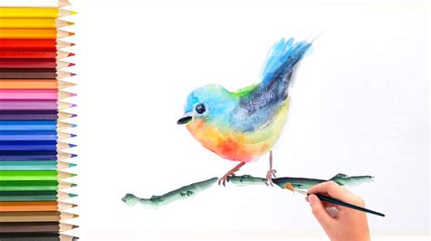 watercolor tutorial how to paint bird artist singapore