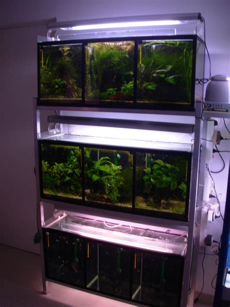 batterie portable fishroom et bac du salon 450l page 2