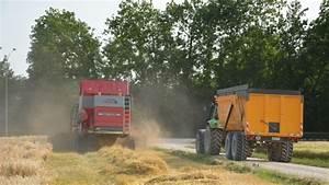 Faut Il Un Permis Pour Conduire Un Tracteur : qui peut conduire le tracteur avec la benne durant les moissons ~ Maxctalentgroup.com Avis de Voitures
