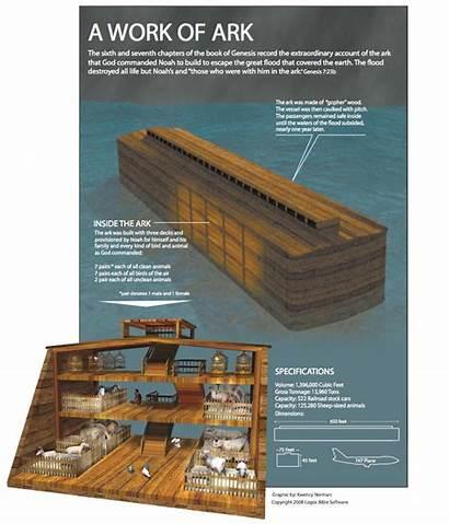 Noah Ark Bible Jesus Flood Story Said