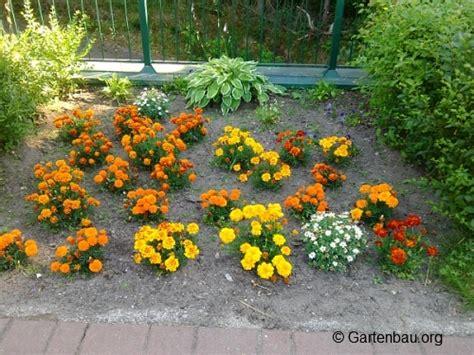Was Gibt Es Beim Blumenbeet Anlegen Zu Beachten?