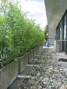 un mur de bambous en jardinieres effet beton amenagement With amenagement terrasse exterieure appartement 5 bambou en pot brise vue naturel et deco sur la terrasse