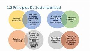 Uidad 1 introduccion desarrollo sustentable