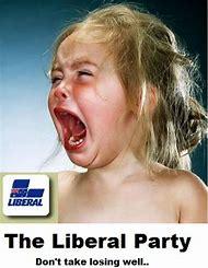 Crying Funny Liberal Memes