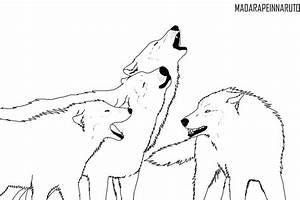 Anime Wolf Pack Coloring Coloring Pages