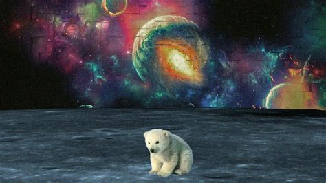 Trippy Animal Wallpaper - trippy space wallpapers wallpaper cave