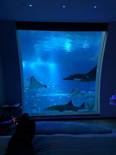 beautiful underwater hotel room jpegy
