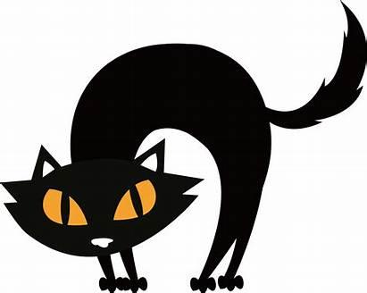 Halloween Cat Silhouette Transparent Gato Preto Clipart