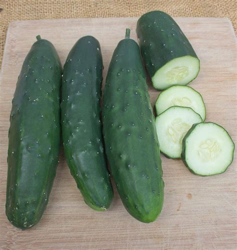 Cucumber Seeds by Olympian Cucumber Seeds