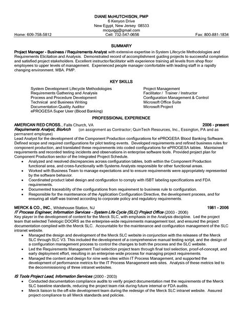 resume professional summary exle on summary with