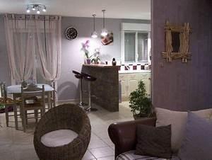Plans terrain construction de notre maison ctn modele for Deco cuisine pour salon en rotin