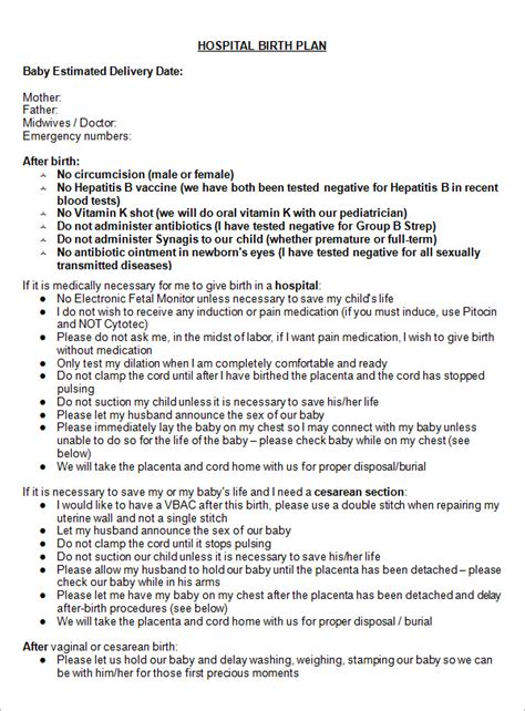 birth plan template 22 sle birth plan templates pdf word apple pages sle templates