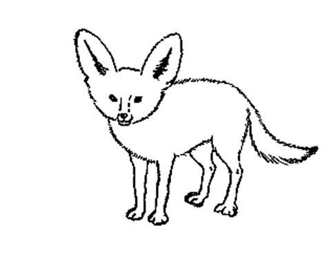 desert fox netart