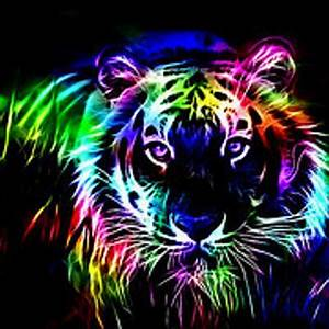 1000 images about Neon animals flower people on Pinterest