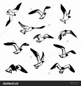 Drawing Birds In Flight Hand Drawn Flying Seagulls. Black ...