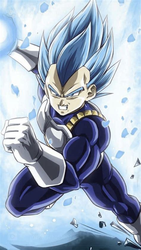 majin vegeta  wallpapers wallpaper cave