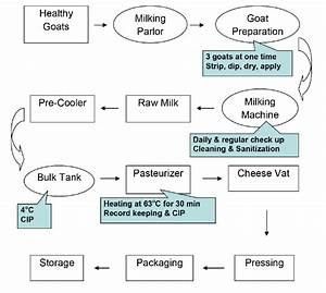 Haccp Flow Diagram Of Milking And Processing Procedures