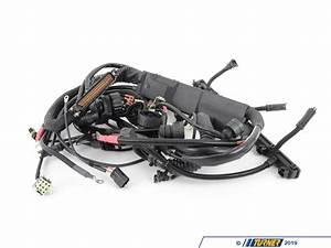 12517501135 - Genuine Bmw Engine Wiring Harness Dme Asc - 12517501135