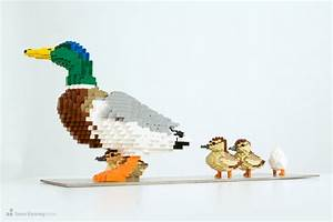 Sean Kenney - Art with LEGO bricks : Duck-and-ducklings