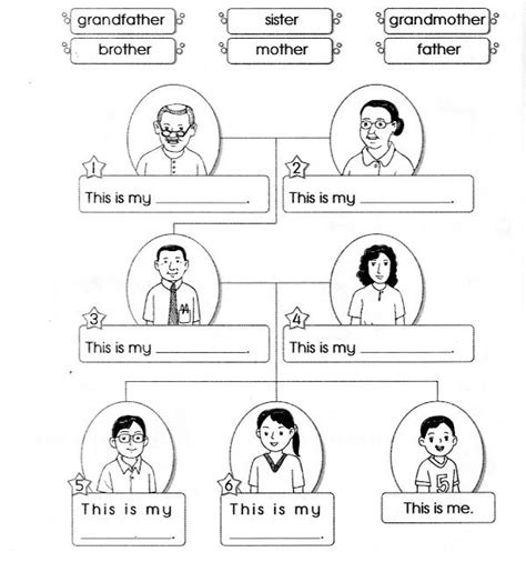 worksheet topic  family lizas family material