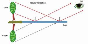 Law Of Reflection  Lesson 0936