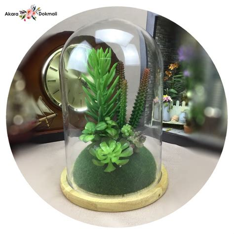 ต้นไม้ประดิษฐ์ แคคตัสปลอมในแก้วโดม สวยเหมือนของจริง สำหรับ ...