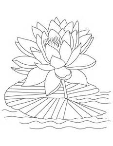 japanese lantern plant free printable lotus coloring pages for kids