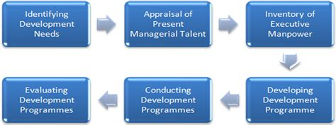 project management steps  organize  executive