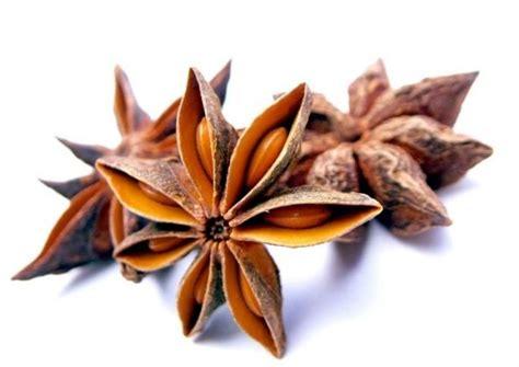 etoile de badiane cuisine badiane ou anis étoilé epices et aromates du peps en