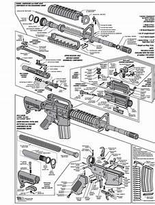 Description Of Each Part Of The Ar15 - The Beginners Ar15 Armory