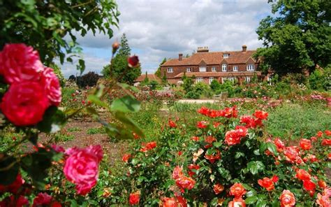 Garden Picture by Why Gardens Are No Longer A Bed Of Roses