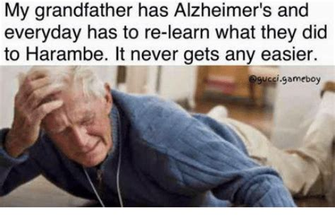 Funny Harambe Memes - my grandfather has alzheimer s and everyday has to re learn what they did to harambe it never