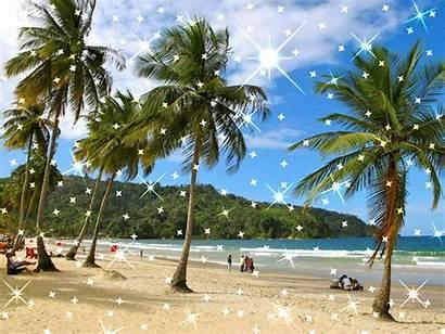 Trinidad Tobago Maracas Bay Spain Tourist Attractions