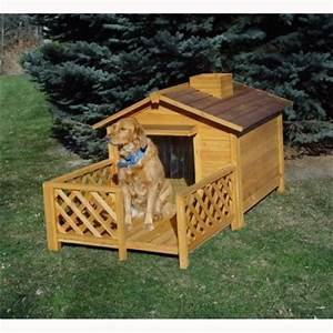 unique dog houses for sale buy indoor or outdoor With unique indoor dog houses