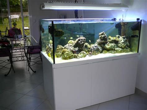 aquarium sur mesure ile de 28 images aquariums sur