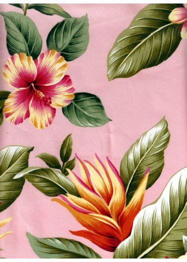 wehi tropical hibiscus bird  paradise plumeria