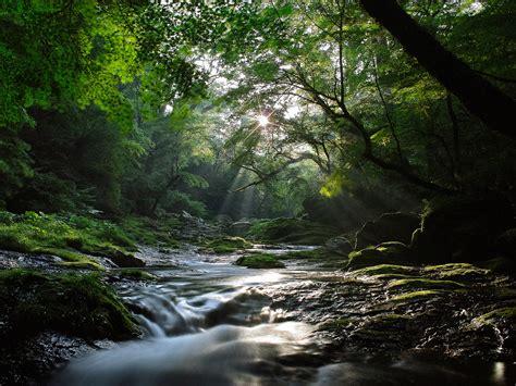 Beautiful Nature River  Free Desktop Wallpapers For