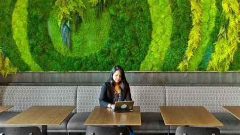 beautiful custom moss walls panels artisan moss