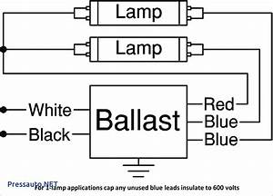 T12 Ballast Wiring Diagram 1 Lamp And 2 Lamp Fluorescent Ballast Wiring Diagrams