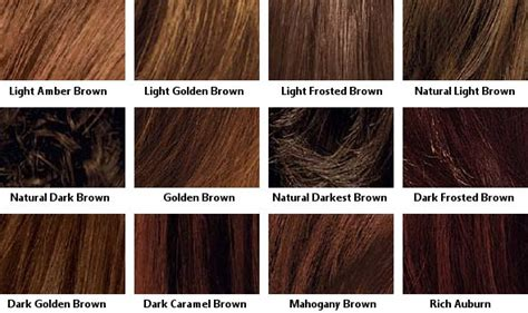 Shades Of Hair Dye by Brown Hair Color Chart Coloring Hair And Hair