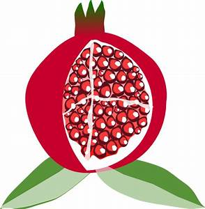 Pomegranate Fruit Clip Art at Clker.com - vector clip art ...
