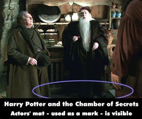 Harry Potter And The Chamber Of Secrets (2002) Movie