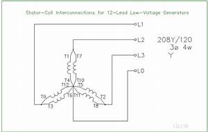 Motor Wiring Diagrams 12 Lead
