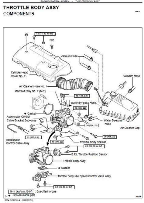 repair manuals toyota echo   repair manual